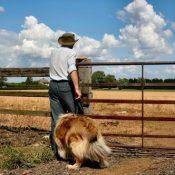 Skaffa fritidsbyxor till hundpromenaden